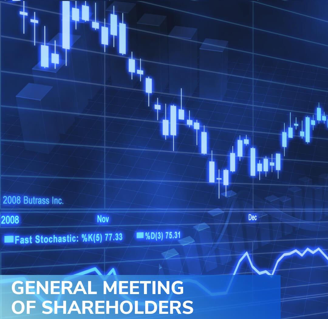 general meeting of shareholders